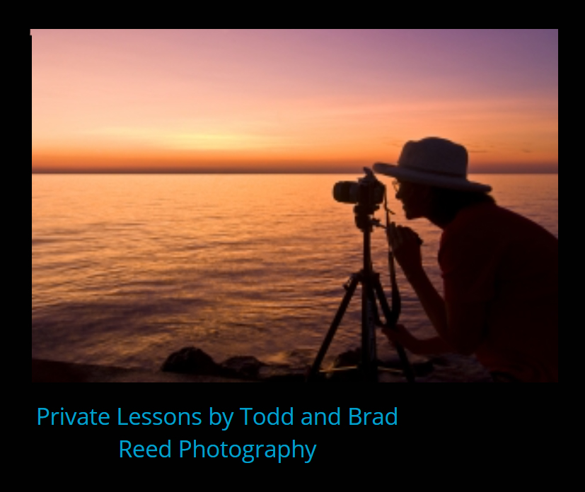 Private Lesson with Todd & Brad Reed
